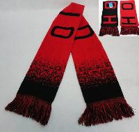 Knitted Scarf with Fringe [OHIO] Digital Fade